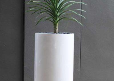 wilston-80-white