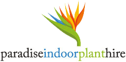 Paradise Indoor Plant Hire